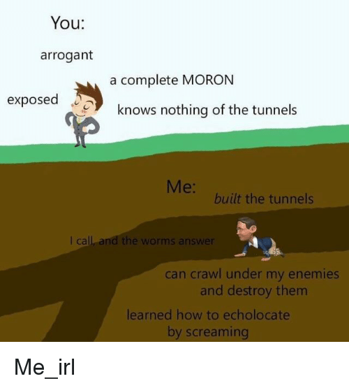 Arrogant, How To, and Enemies: You:  arrogant  a complete MORON  exposed  knows nothing of the tunnels  Me:  built the tunnels  I call and the worms answer  5  can crawl under my enemies  and destroy them  learned how to echolocate  by screaming