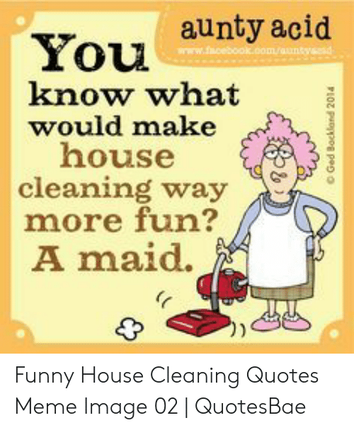 You Aunty Acid Know What Would Make House Cleaning Way More