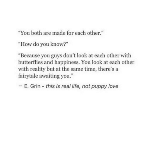 """Life, Love, and Puppy: """"You both are made for each other.""""  """"How do you know?""""  """"Because you guys don't look at each other with  butterflies and happiness. You look at each other  with reality but at the same time, there's a  fairytale awaiting you.""""  E. Grin this is real life, not puppy love"""