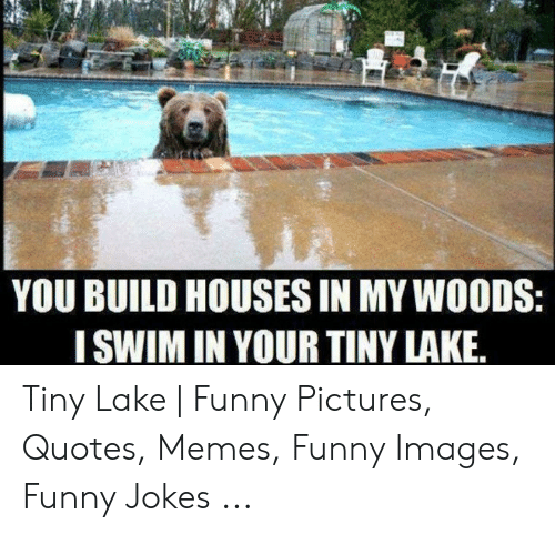 YOU BUILD HOUSES IN MY WOODS I SWIM IN YOUR TINY LAKE Tiny ...