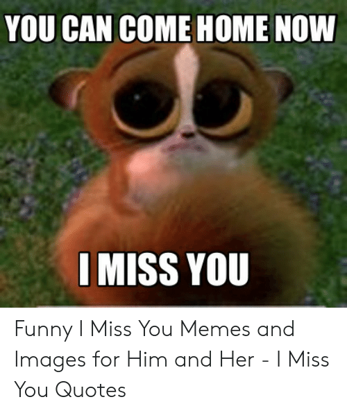 YOU CAN COME HOME NOW I MISS YOU Funny I Miss You Memes and ...