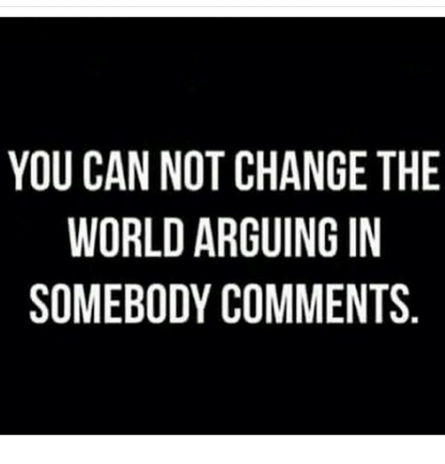 YOU CAN NOT CHANGE THE WORLD ARGUING IN SOMEBODY COMMENTS