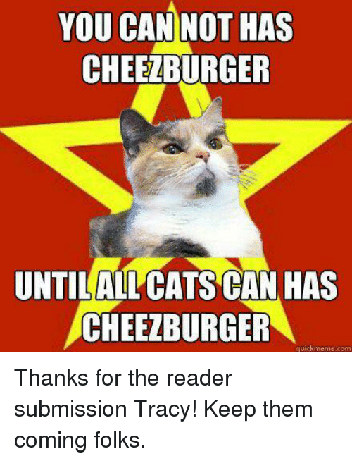 you can not has cheezburger untilallcats can has cheezburger quick 20752150 i can has cheezburger what's the oldest meme that stands a chance,Cheezburger Memes