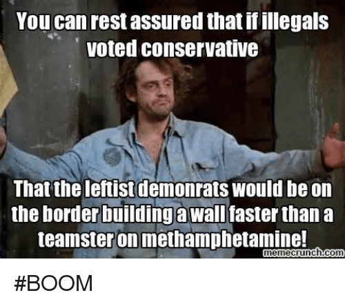 you can rest assured that if illegals voted conservative that 17586568 ✅ 25 best memes about leftist leftist memes