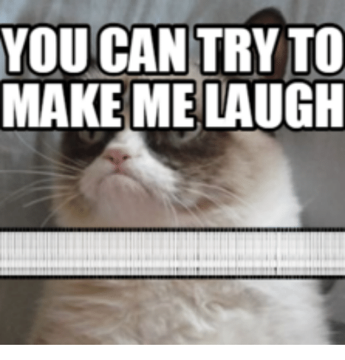 Funny Memes To Make Him Laugh : Pictures to make laugh gifs guaranteed you