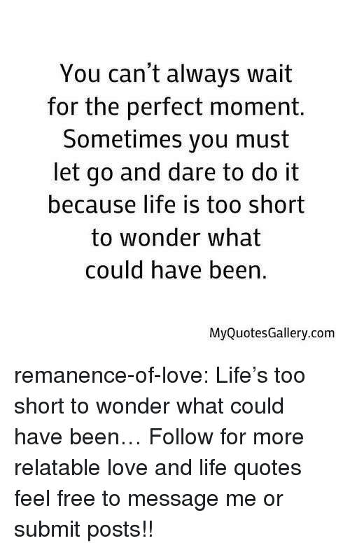 Life, Love, and Target: You can't always wait  for the perfect moment.  Sometimes you must  let go and dare to do it  because life is too short  to wonder what  could have been  MyQuotesGallery.com remanence-of-love:  Life's too short to wonder what could have been…  Follow for more relatable love and life quotes     feel free to message me or submit posts!!
