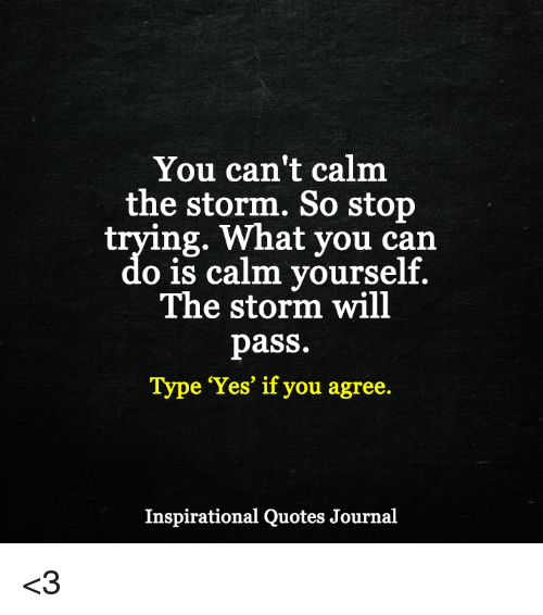 You Cant Calm The Storm So Stop Trying What You Can O Is Calm