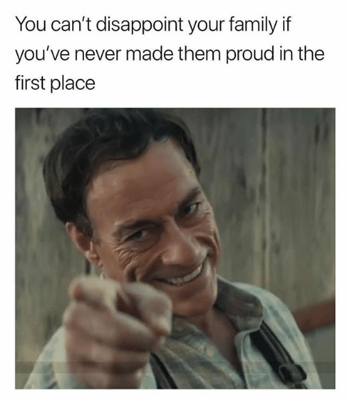 Family, Memes, and Proud: You can't disappoint your family if  you've never made them proud in the  first place
