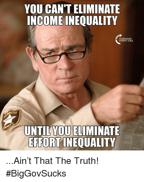 Memes, Truth, and 🤖: YOU CAN'T ELIMINATE  INGOME INEQUALITY  FBRNINSA  POINT USA  RELL  YOU ELIMINATE  UNTIL  EFFORT INEQUALITY ...Ain't That The Truth! #BigGovSucks