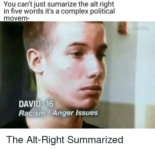 Complex, Racism, and Fullcommunism: You can't just sumarize the alt right  in five words it's a complex political  movem  DAVID, 16  Racism / Anger Issues The Alt-Right Summarized