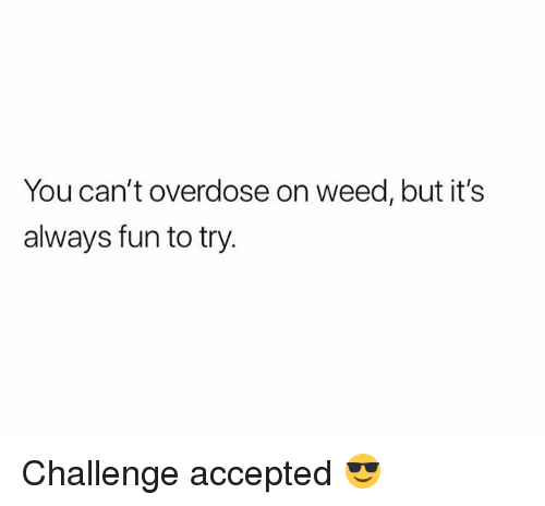 Weed, Marijuana, and Accepted: You can't overdose on weed, but it's  always fun to try Challenge accepted 😎