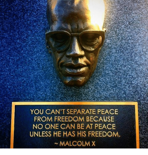 Malcolm X, Memes, and Freedom: YOU CAN'T SEPARATE PEACE  FROM FREEDOM BECAUSE  NO ONE CAN BE AT PEACE  UNLESS HE HAS HIS FREEDOM.  MALCOLM X