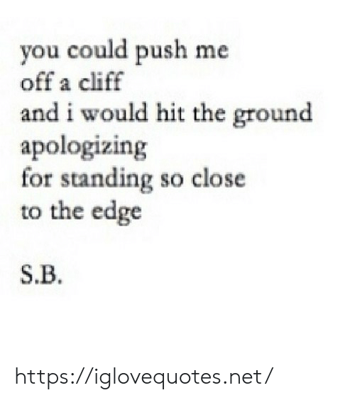 Net, Edge, and Push: you could push me  off a cliff  and i would hit the ground  apologizing  for standing so close  to the edge  S.B https://iglovequotes.net/