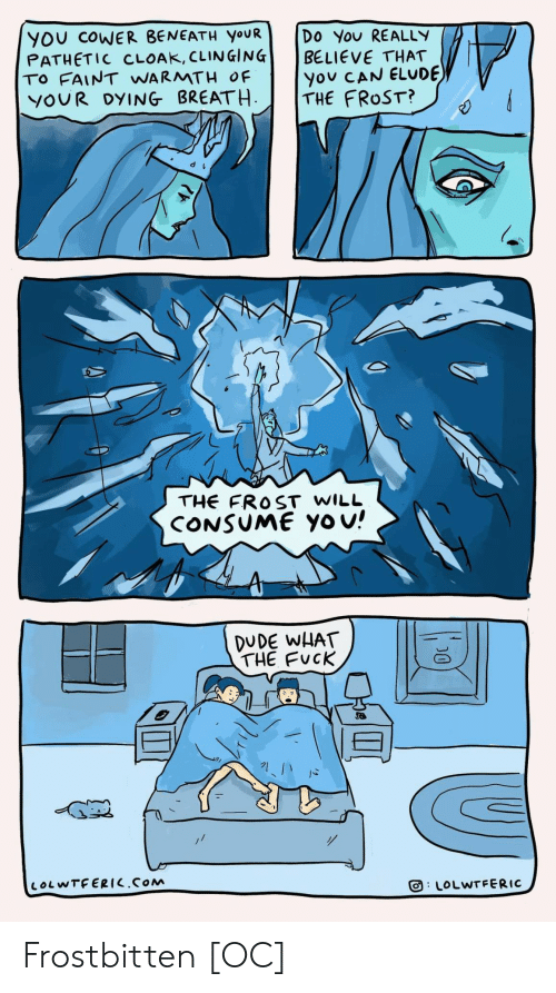 Dude, Yo, and Believe That You Can: YOU COWER BENEATH YOUR  PATHETIC CLOAK, CLINGING  TO FAINT WARMTH OF  YOUR DYING BREATH  Do You REALLY  BELIEVE THAT  you CAN ELUDE  THE FROST?  THE FROST WILL  CONSUME Yo u!  DUDE WHAT  THE FUCK  LOLWTFERIC.COM  LOLWTFERIC  D0 Frostbitten [OC]