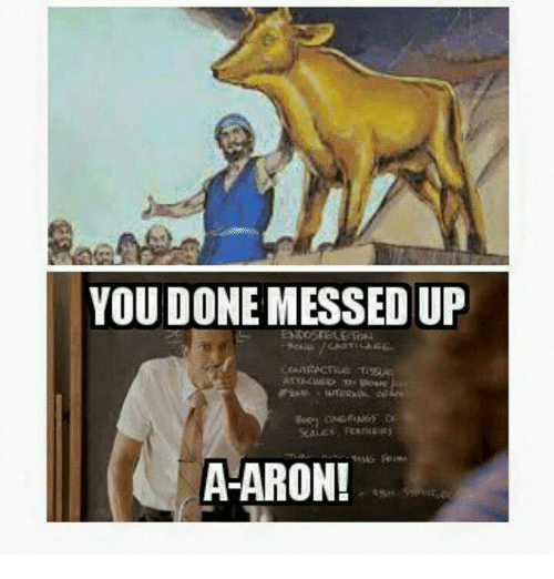 25+ Best Memes About You Done Messed Up Aaron | You Done ...