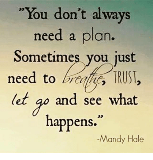 You Dont Always Need A Plan Sometimes You Just Need To Brtihe Trust