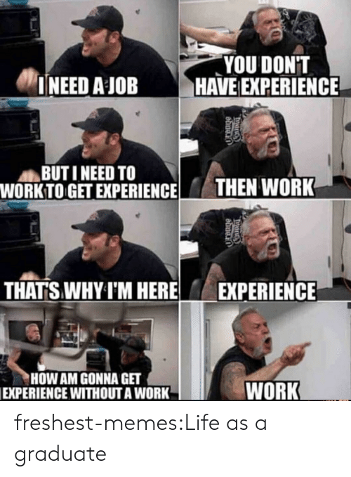 Life, Memes, and Tumblr: YOU DONT  INEED AJOBHAVE EXPERIENCE  BUTI NEED TO  WORKTO GET EXPERIENCE HEN WORK  THAT'S WHY I'M HERE EXPERIENCE  HOW AM GONNA GET  EXPERIENCE WITHOUTA WORK  WORK freshest-memes:Life as a graduate