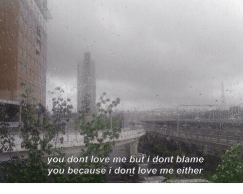 Love, Blame, and You: you dont love me but i dont blame  you because i dont love me either