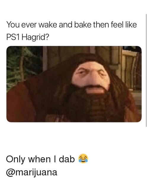 Weed, Marijuana, and Dab: You ever wake and bake then feel like  PS1 Hagrid? Only when I dab 😂 @marijuana
