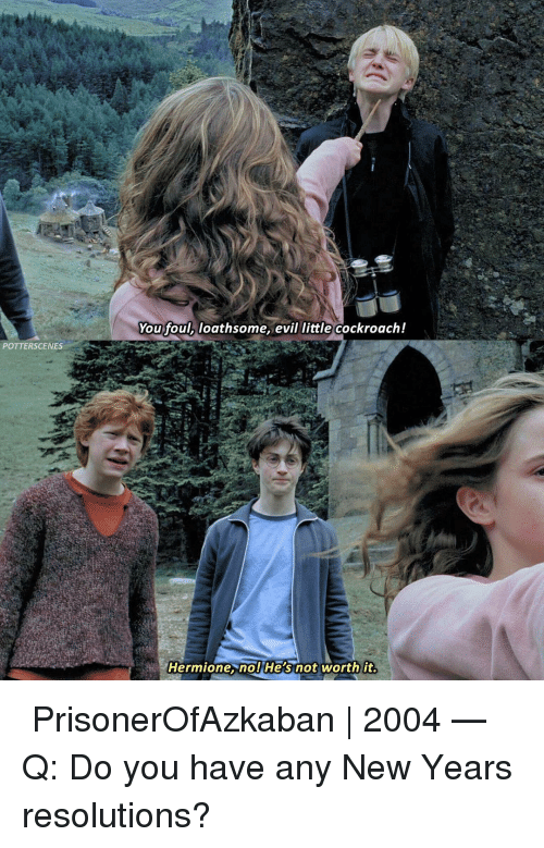 Hermione, Memes, and New Year's Resolutions: You foul, loathsome, evil little cockroach!  POTTERSCENES  Hermione. nol He's not worth it ➙ PrisonerOfAzkaban | 2004 — Q: Do you have any New Years resolutions?
