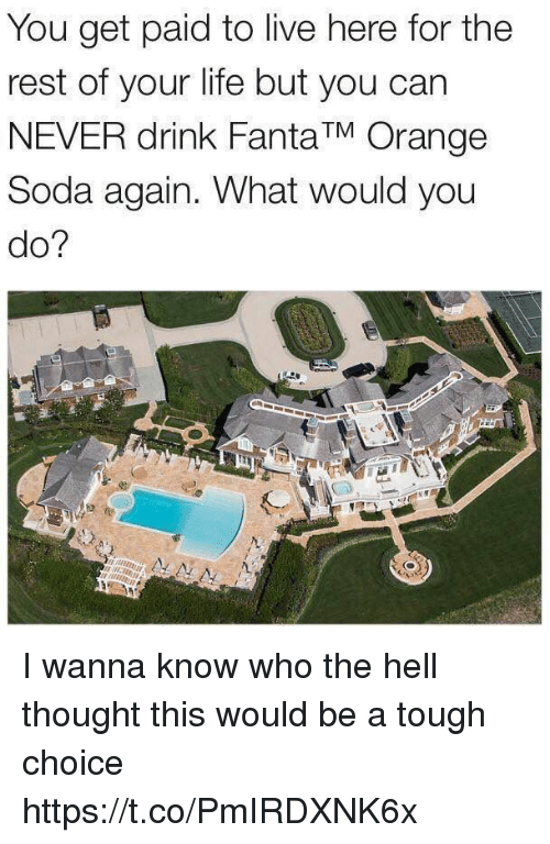 Drinking, Fanta, and Life: You get paid to live here for the  rest of your life but you can  NEVER drink Fanta TM Orange  Soda again. What would you  do? I wanna know who the hell thought this would be a tough choice https://t.co/PmIRDXNK6x