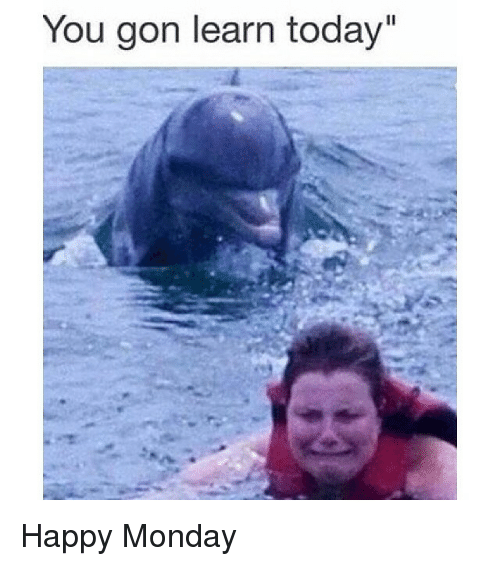 you gon learn today happy monday 14385700 ✅ 25 best memes about happy mondays happy mondays memes