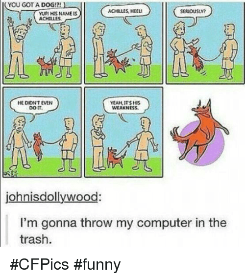 Funny, Memes, and Trash: YOU GOT A DOG!?!  ACHILLES HEEL!  SERIOUSLY?  YUPI HIS NAME LS  HEDIONTEVEN  YEAH ITS HIS  DOIT.  WEAKNESS.  isdollywood  JO  I'm gonna throw my computer in the  trash. #CFPics #funny