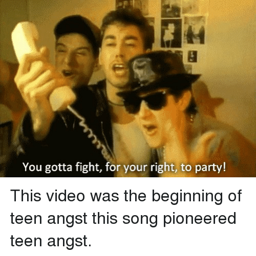 you gotta fight for your right to party