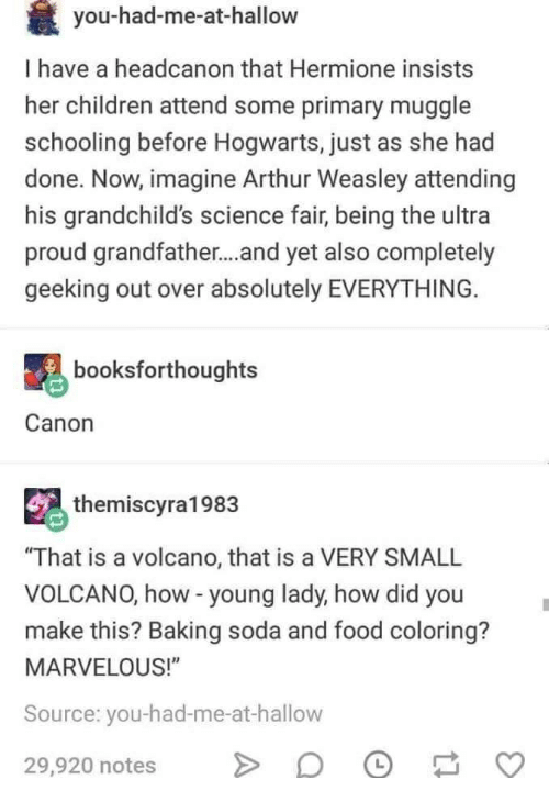 You-Had-Me-At-Hallow I Have a Headcanon That Hermione