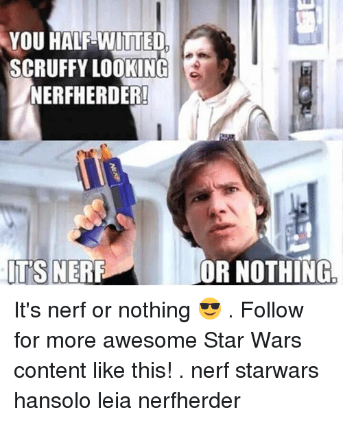 you half witted scruffy looking nerfherder its nerf or nothing it s