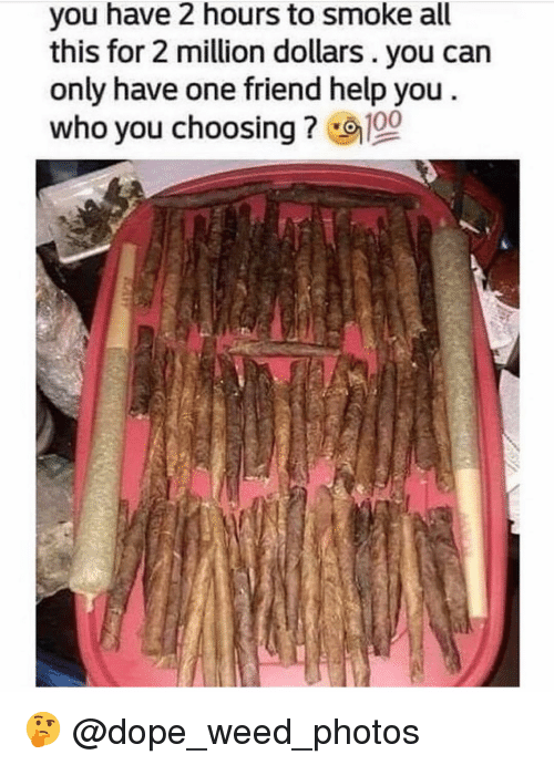Dope, Weed, and Help: you have 2 hours to smoke all  this for 2 million dollars. you can  only have one friend help you  who you choosing ? 🤔 @dope_weed_photos