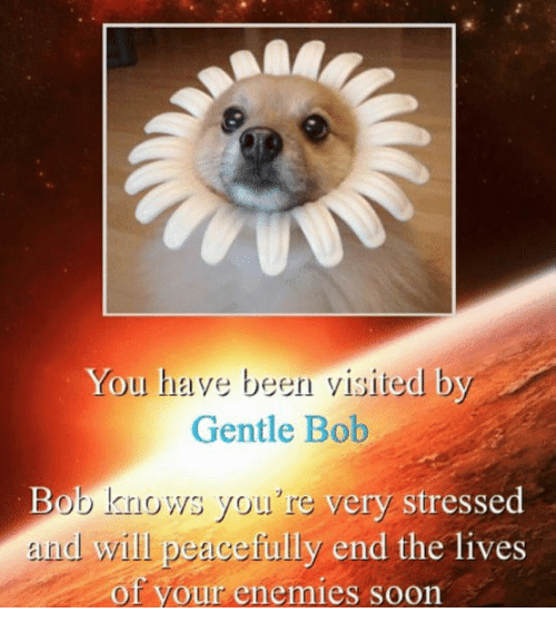 Soon..., Enemies, and Been: You have been visited by  Gentle Bob  Bab knows you 're very stressed  end will peacefully end the lives  of your enemies soon