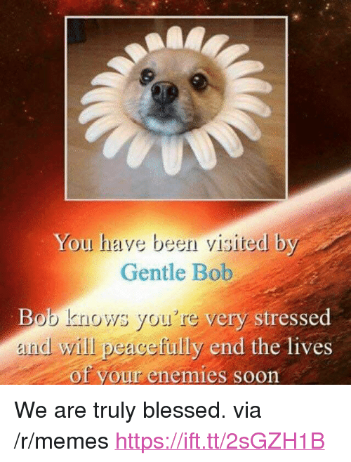 "Blessed, Memes, and Soon...: You have been visited by  Gentle Bob  Bob knows you're very  nd will peacefully end the lives  stresse  of your enemies soon <p>We are truly blessed. via /r/memes <a href=""https://ift.tt/2sGZH1B"">https://ift.tt/2sGZH1B</a></p>"
