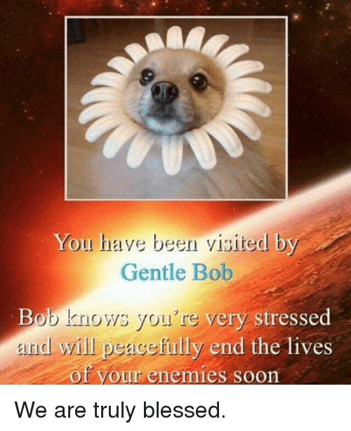 Blessed, Soon..., and Enemies: You have been visited by  Gentle Bob  Bob knows you're very str  esscd  nd will peacefully end the lives  of your enemies soon We are truly blessed.