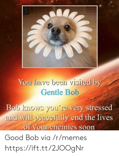 Memes, Good, and Enemies: You have been visited by  Gentle Bob  very stressed  Bob knows you're  and will peacefully end the lives  of your enemies s  oon Good Bob via /r/memes https://ift.tt/2JOOgNr