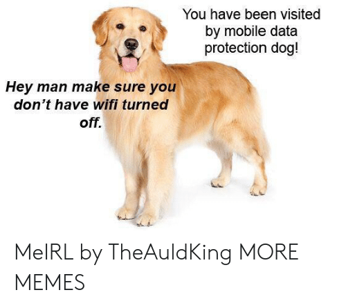 Dank Memes And Target You Have Been Visited By Mobile Data Protection Dog