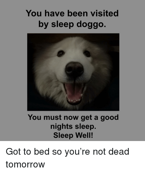 Good, Tomorrow, and Sleep: You have been visited  by sleep doggo.  You must now get a good  nights sleep.  Sleep Well! Got to bed so you're not dead tomorrow