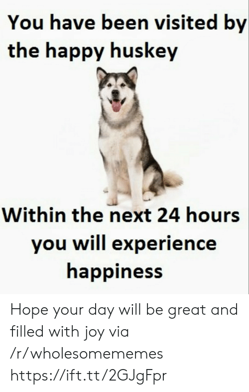 Happy, Experience, and Happiness: You have been visited by  the happy huskey  Within the next 24 hours  you will experience  happiness Hope your day will be great and filled with joy via /r/wholesomememes https://ift.tt/2GJgFpr