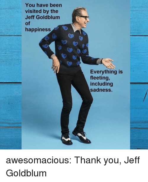Tumblr, Thank You, and Blog: You have been  visited by the  Jeff Goldblum  of  happiness  Everything is  fleeting,  including  sadness. awesomacious:  Thank you, Jeff Goldblum