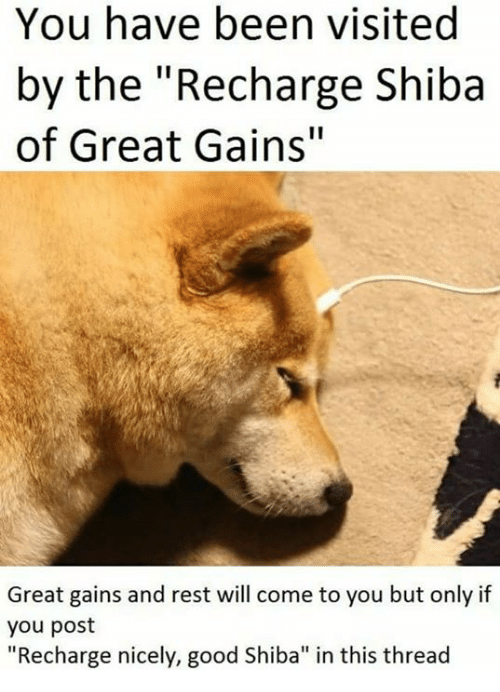 "Good, Been, and Rest: You have been visited  by the ""Recharge Shiba  of Great Gains""  Great gains and rest will come to you but only if  you post  ""Recharge nicely, good Shiba"" in this thread"