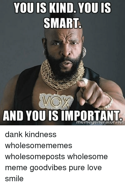 Dank, Love, and Meme: YOU IS KIND. YOU IS  SMART  VOX  AND YOU IS IMPORTANT dank kindness wholesomememes wholesomeposts wholesome meme goodvibes pure love smile