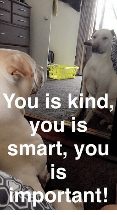 Memes, 🤖, and You Is Smart: You is kind  you is  smart, you  IS  important!