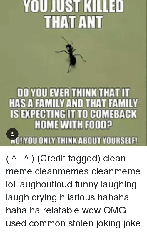 You just killed that ant do you ever think that it has a family and lol memes and common you just killed that ant do you ever think solutioingenieria Images