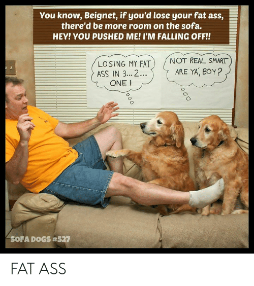 Ass, Fat Ass, and Memes: You know, Beignet, if you'd lose your fat ass,  there'd be more room on the sofa.  HEY! YOU PUSHED ME! I'M FALLING OFF!!  LOSING MY FATNOT REAL SMART  ASS IN 3...2.  ARE YA, BOY?  ONE !  0  SOFA D GS FAT ASS