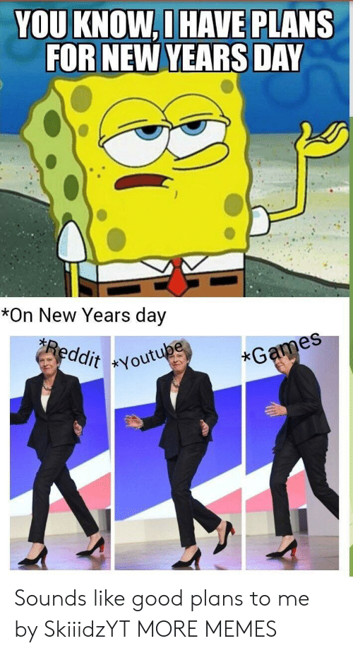 Dank, Memes, and Target: YOU KNOW,D HAVE PLANS  FOR NEW YEARS DAY  es  *On New Years day  es  ddit Youtu  xG Sounds like good plans to me by SkiiidzYT MORE MEMES