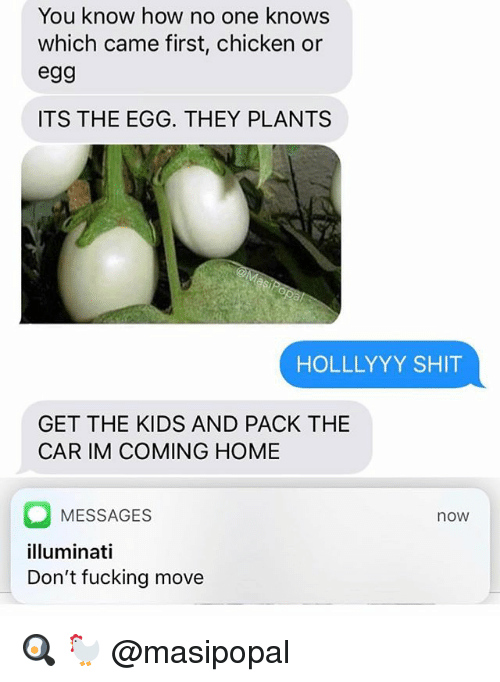 Fucking, Illuminati, and Shit: You know how no one knows  which came first, chicken or  egg  ITS THE EGG. THEY PLANTS  HOLLLYYY SHIT  GET THE KIDS AND PACK THE  CAR IM COMING HOME  MESSAGES  illuminati  Don't fucking move  now 🍳 🐓 @masipopal