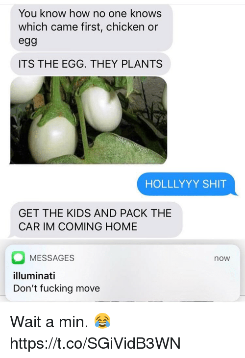 Fucking, Illuminati, and Shit: You know how no one knows  which came first, chicken or  eg9  ITS THE EGG. THEY PLANTS  HOLLLYYY SHIT  GET THE KIDS AND PACK THE  CAR IM COMING HOME  MESSAGES  illuminati  Don't fucking move  now Wait a min. 😂 https://t.co/SGiVidB3WN