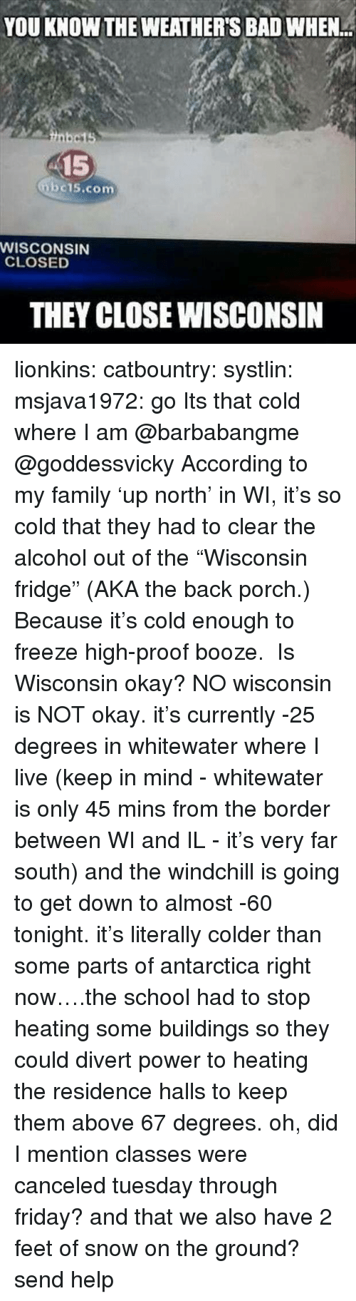 """Bad, Family, and Friday: YOU KNOW THE WEATHER'S BAD WHEN  15  bc15.com  WISCONSIN  CLOSED  THEY CLOSE WISCONSIN lionkins:  catbountry:  systlin:  msjava1972:  go Its that cold where I am @barbabangme @goddessvicky  According to my family'up north' in WI, it's so cold that they had to clear the alcohol out of the""""Wisconsin fridge"""" (AKA the back porch.) Because it's cold enough to freeze high-proof booze.  Is Wisconsin okay?  NO wisconsin is NOT okay. it's currently -25 degrees in whitewater where I live (keep in mind - whitewater is only 45 mins from the border between WI and IL - it's very far south) and the windchill is going to get down to almost -60 tonight. it's literally colder than some parts of antarctica right now….the school had to stop heating some buildings so they could divert power to heating the residence halls to keep them above 67 degrees. oh, did I mention classes were canceled tuesday through friday? and that we also have 2 feet of snow on the ground?send help"""