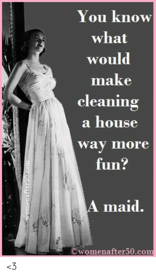 Memes, House, and 🤖: You know  what  would  make  cleaning  a house  way more  fun:  A maid.  Cwomenafter50.com <3