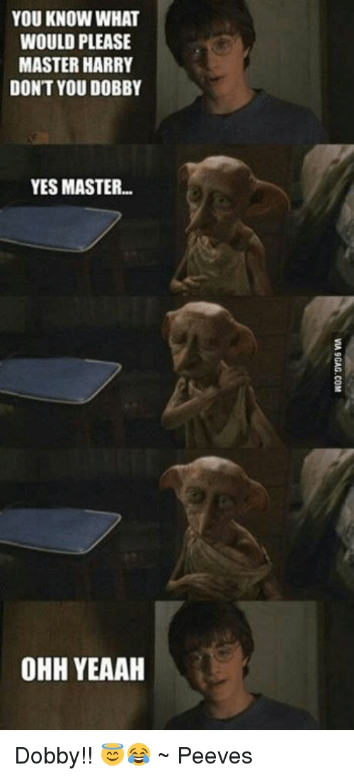 Memes, 🤖, and Yes: YOU KNOW WHAT  WOULD PLEASE  MASTER HARRY  DONT YOU DOBBY  YES MASTER  OHH YEAAH Dobby!! 😇😂 ~ Peeves